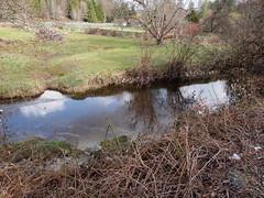 West Fork Woods Creek