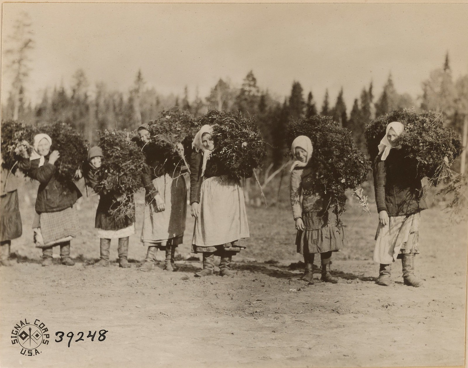 06. Бакарица. Местные жители расчищают территорию под британский лагерь