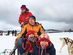 Dog sledding at Kvaløya