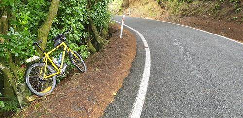 Horokiwi Road Narrow Road wide view