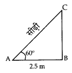 CBSE Sample Papers for Class 10 Maths in Hindi Medium Paper 3 S5
