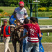 avatarsound posted a photo:SUFFOLK DOWNS - July 8, 2018 - Race 9CLAIMING - ThoroughbredFOR THREE YEAR OLDS OR FOUR YEAR OLDS AND UPWARD WHICH HAVE NEVER WON THREE RACES. Three Year Olds, 120 lbs.; Older, 124 lbs. Non-winners of a race since June 7 Allowed 3 lbs. Claiming Price $7,500. ( C) Claiming Price: $7,500Six Furlongs On The Dirt Track Record: (Canal - 1:08.20 - May 14, 1966)Purse: $30,000Weather:Clear Track:FastOff at: 4:16 Start: Good for all1 - Hard Hitter (Hernandez Sanchez, Andy)6 - Southern Cross (Cruz, Angel)1A - Lucky Town (Reyes, Luis)