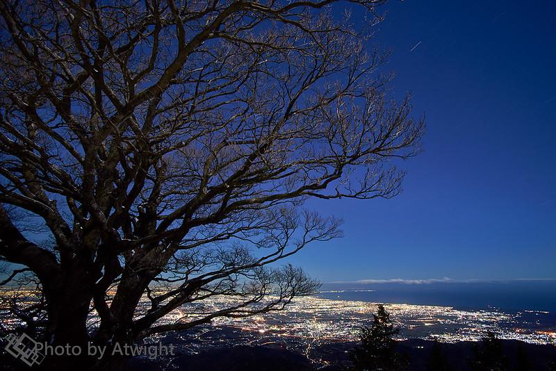 Lights of Kanagawa
