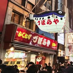 Dotonbori, Osaka,