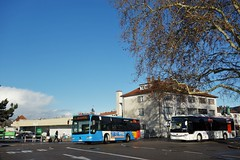 Mercedes Benz Citaro K n°115  -  Haguenau, RITMO - Photo of Ohlungen