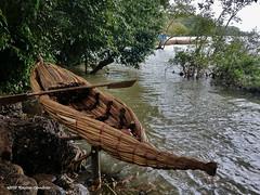 05_Lake Tana bamboo boat