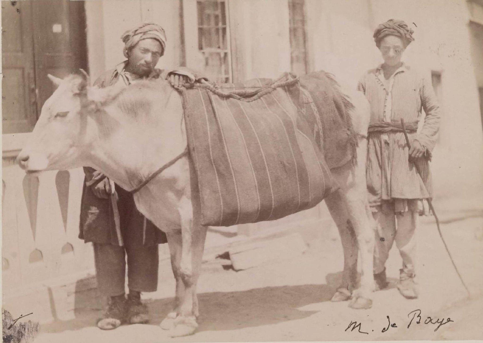 03. Карсская область. Курды с вьючным быком