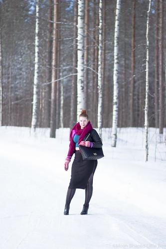 Paivan_asu_talvimuoti-13