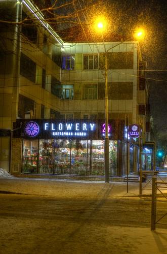 'FLOWERY' 22FEB2019 (4)