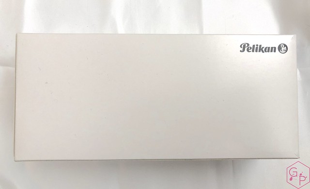 Pelikan Souverän M1005 Stresemann Fountain Pen Review 4_RWM