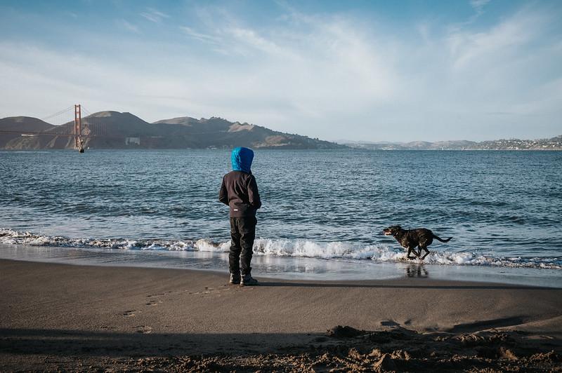 A dog & his boy