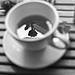 Tea rose by _Oh my god Greta_