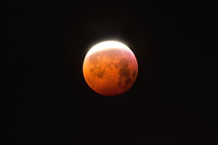 éclipse de Lune 21 janvier 2019 - sortie du cône d'ombre - Photo of Beaumat