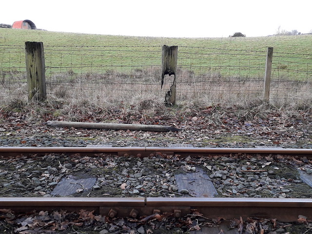 Burnt Fence Post