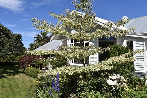 Botanica Marlborough