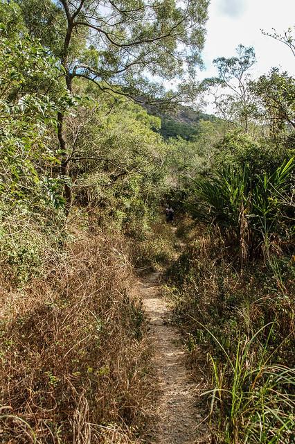 久保山步道 1