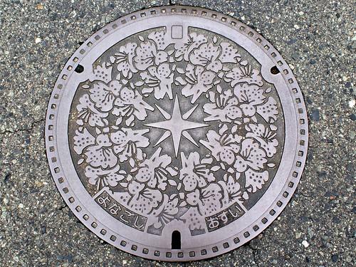 Yonago Tottori, manhole cover (鳥取県米子市のマンホール)