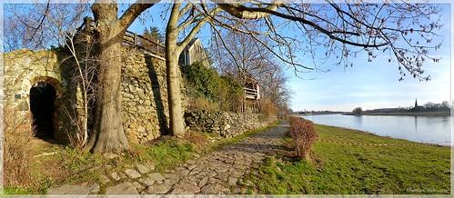 Elbufer in Leckwitz