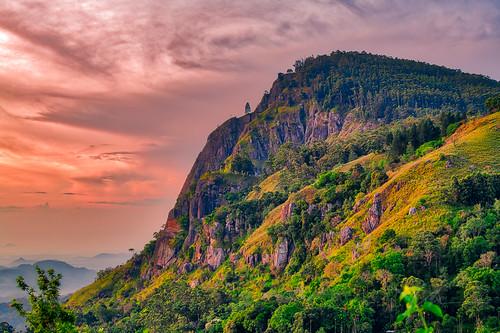 2018 lka cloudscape nature nikond850 srilanka trees dense mountain jungle beautyinnature dramaticsky yobelmuchang forest outdoors sunrise nikon yobel muchang ella uvaprovince lk