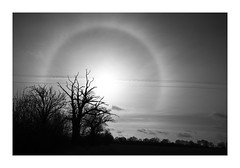 22 Degree Halo