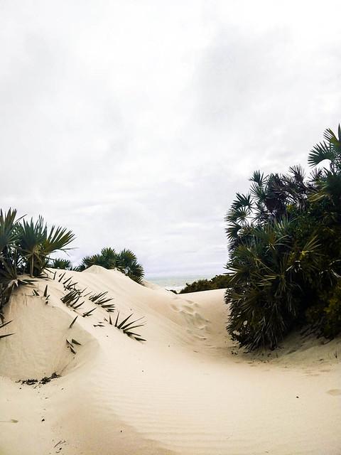 IMG_20180926_160837 beach