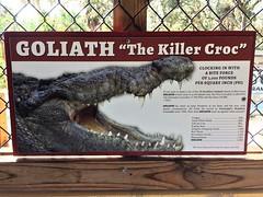 Goliath Sign