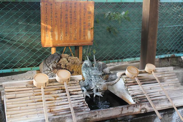 shinjukusuwa004