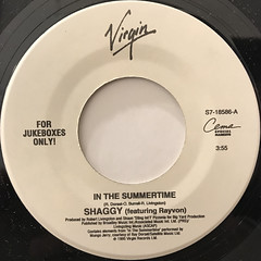 SHAGGY FEATURING RAYVON:IN THE SUMMERTIME(LABEL SIDE-A)