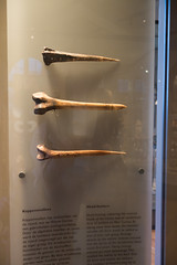 New Guinea bone trophies