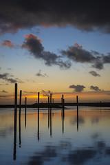 North Sea // Nordsee