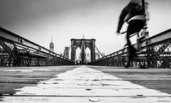 Brooklyn Bridge Cyclist, NYC