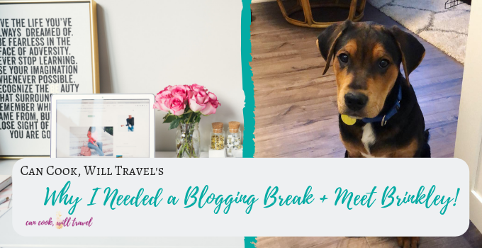 Blogging Break