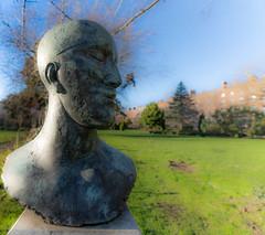 TRIBUTE HEAD II BY ELISABETH FRINK IN MERRION SQUARE PARK [SIGMA 14m LENS]-148980