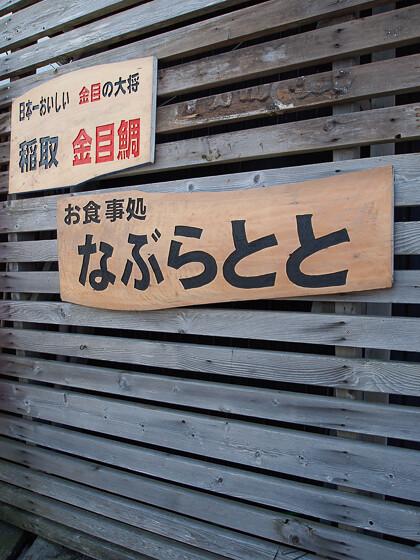 kawazuzakura_10