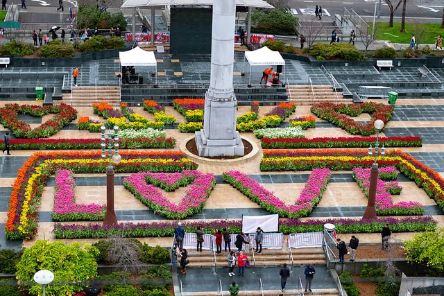 American Tulip Day in San Francisco