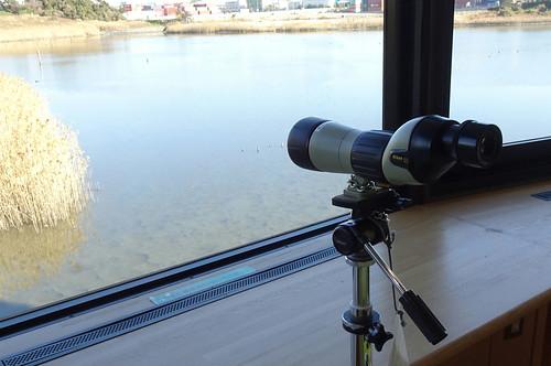 東京港野鳥公園ネイチャーセンター