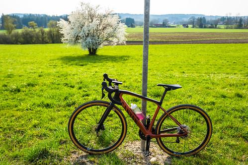 Canyon Bike