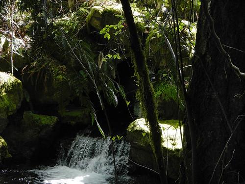 Waterfalls Sooke Potholes Park on Vancouver Island, Canada