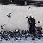 The Bird Man by John J Fogarty
