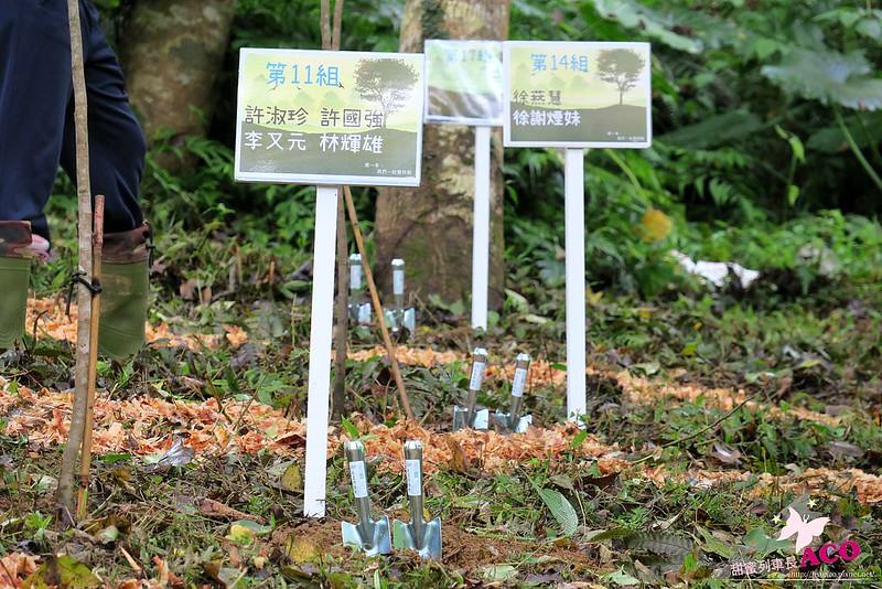 延伸島嶼生命綠 花蓮護樹IMG_5182