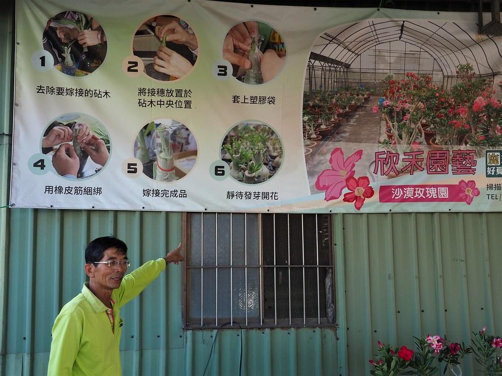 鹿草農業體驗 (16)