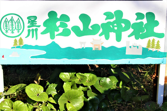 hoshikawasugiyamajinja006