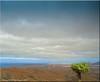 Fuerteventura 2019 - Valle de Santa Inés