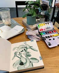 I added Perylene Green to my watercolour palette today, and as an exercise I painted the plant on my table at Mockamore with just the Perylene Green. #sketchbook #watercolour #perylenegreen #plant #succulent #monochrome #artisaverb #artstagram #winsorandn