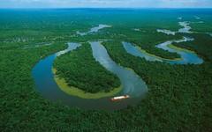Noruega doa US$ 70 milhões para preservação da floresta Amazônica