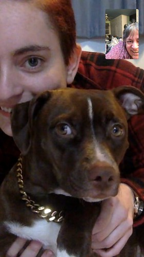 Bentley the pup on video chat