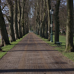 Long walkway at Avenham Park, Preston