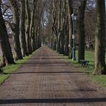 Long walkway at Avenham Park, Preston