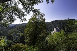 Beautiful view to Castle Eltz - Wierschem - Germany