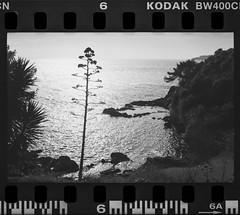 méditérannée - Photo of Toulon